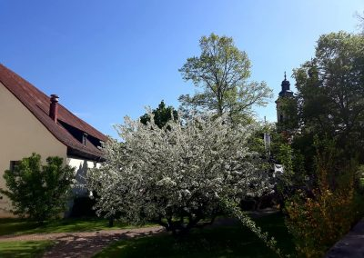 St. Georgstage Bad Mergentheim 2018